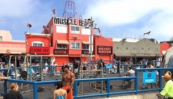マッスルビーチ カリフォルニアベニスビーチ アメリカ雑貨屋 SUNBRIDGE