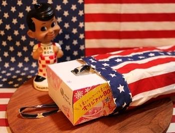 アメリカティッシュケース 星条旗ティッシュケース アメリカ雑貨屋サンブリッヂ SUNBRIDGE 岩手雑貨屋 アメリカ雑貨通販
