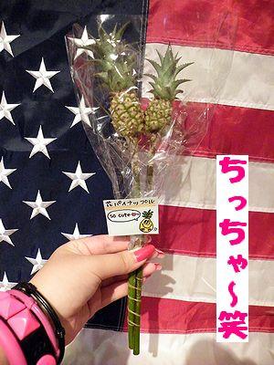 アメリカ雑貨 通販 岩手 サンブリッヂ 日記 ブログ ミニパイン★アナナス