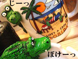アメリカ雑貨 SUNBRIDGE 商品紹介 ワニ マグカップ&灰皿