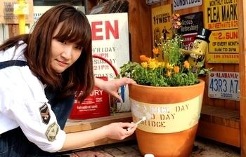 アメリカン鉢植え おしゃれ鉢植え アメリカ雑貨屋 サンブリッヂ SUNBRIDGE 岩手雑貨屋
