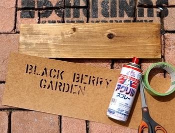 ブラックベリーの育て方とは アメリカ雑貨屋サンブリッヂ SUNBRIDGE 岩手雑貨屋 アメリカ雑貨