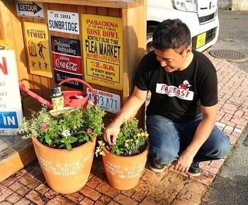 花 花植え ウクレレ アメリカ雑貨屋 サンブリッヂ SUNBRIDGE 岩手雑貨屋 アメリカ雑貨通販