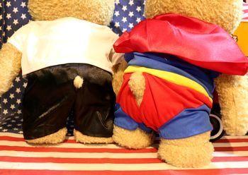 テッド トーキングテッド アメリカ雑貨屋 アメリカン雑貨 サンブリッヂ 岩手雑貨屋 通販 矢巾町