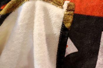 ジュラシックパークブランケット 恐竜毛布 JURASSICPARK アメリカ雑貨屋 アメリカン雑貨 サンブリッヂ 岩手雑貨屋 通販 矢巾町