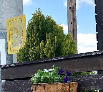 ステンシルシート ステンシルアート 犬のフン  アメリカ雑貨屋 SUNBRIDGE 岩手矢巾雑貨屋