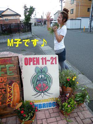 アメリカ雑貨 通販 岩手 サンブリッヂ 日記 ブログ スタッフのガーデニング★