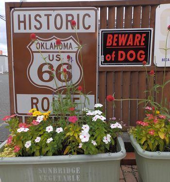 アルミ看板 ブリキ看板 犬注意看板 アメリカ雑貨屋 サンブリッヂ アメリカ雑貨通販